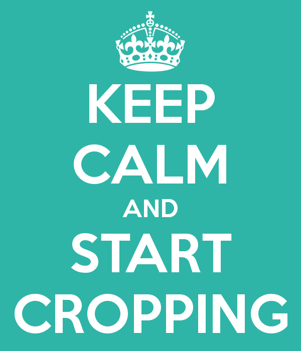 Keep Calm and Start Cropping