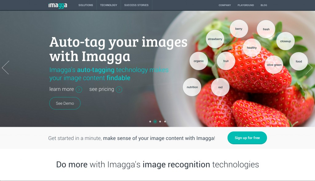 Imagga Auto Tagging