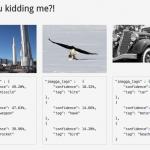 Blitline Integrates Imagga Auto Tagging