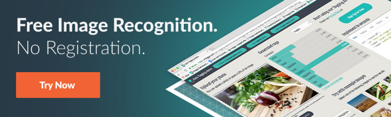 free image recognition with imagga